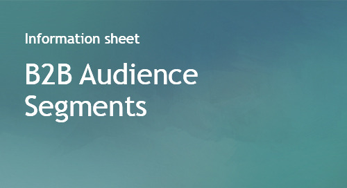 B2B Audience Segments