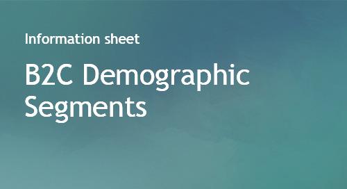 B2C Demographic Segments