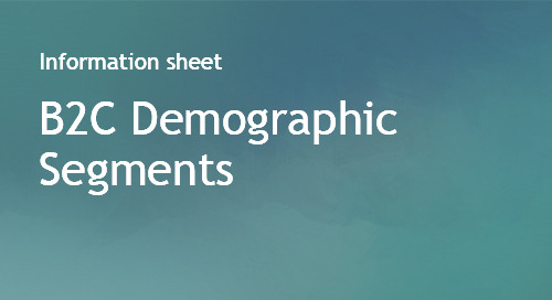 B2C Demographic Segments