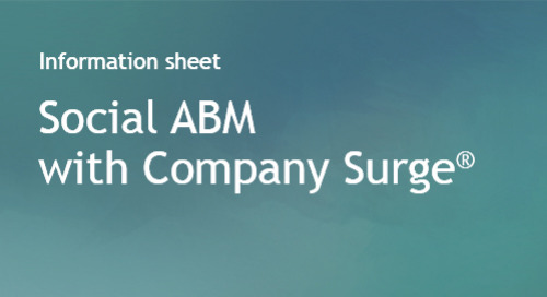 Company Surge® use case - Social ABM