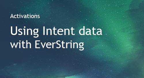 EverString - Partner Information Sheet
