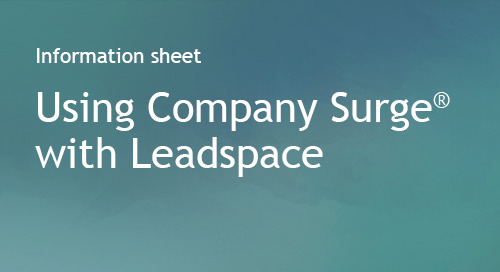 Leadspace - Partner Information Sheet