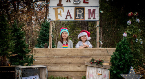 Picture Perfect: Lifestyle Shoot at Crow's Tree Farm