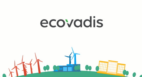 EcoVadis Ratings Solution Overview