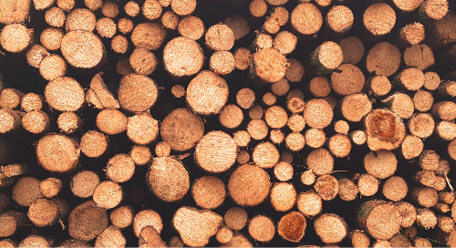 The European Union Timber Regulation (EUTR): When Legal Does Not Equal Sustainable