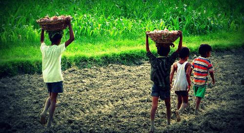 Welttag gegen Kinderarbeit 2020 - Covid-19 erhöht die Risiken für Kinder