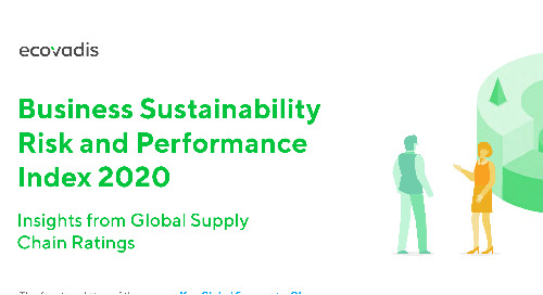 Infographic: Business Sustainability Risk and Performance Index 2020