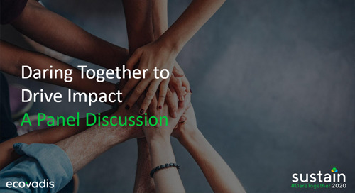 CPO Panel: Daring Together to Drive Impact, Sustain 2020