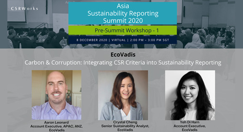 Carbon & Corruption: Integrating CSR Criteria into Sustainability Reporting