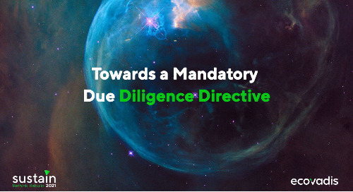 Towards a Mandatory Due Diligence Directive