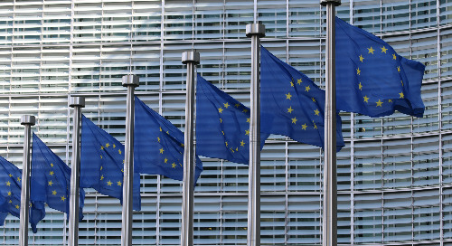 Mandatory Due Diligence Legislation – EU Developments, Member State Laws, and How Your Company Can Prepare