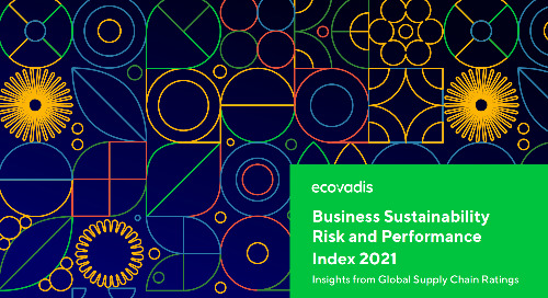 Business Sustainability Risk and Performance Index 2021: Insights from Global Supply Chain Ratings