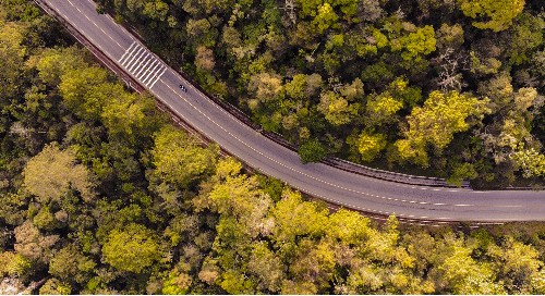 A Roadmap for Sustainability: Insights on the EcoVadis Assessment from the Founder of a Small Tech Company