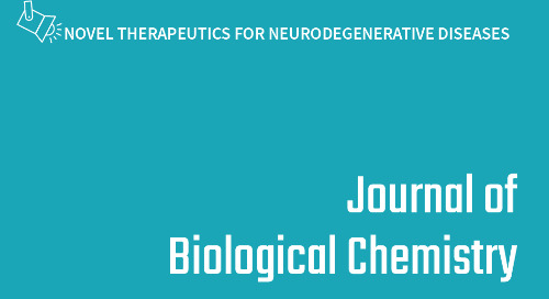 The voltage-dependent anion channel 1 mediates amyloid ß toxicity and represents a potential target for AD therapy