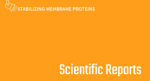 High-throughput stability screening for detergent-solubilized membrane proteins