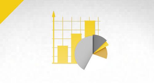 2019 Digital Analytics and Governance Report