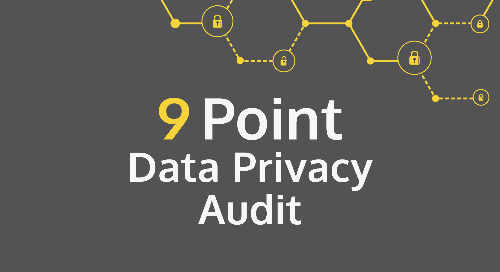 9 Point Data Privacy Audit