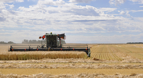 2018 Delivers an Overall Good-Quality Crop