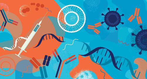 Comment fonctionnent les vaccins à ARNm contre la COVID-19?