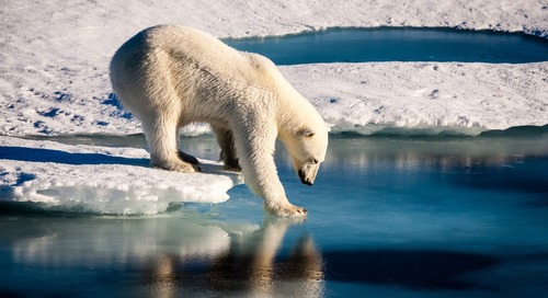 What is climate change? A middle school lesson plan.