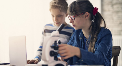 Get the scoop on scopes: Digital microscopes