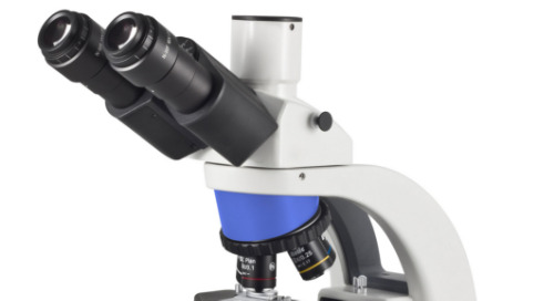 Get the scoop on scopes: Compound microscopes