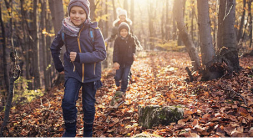 5 Fun Science Ideas for the First Day of Fall