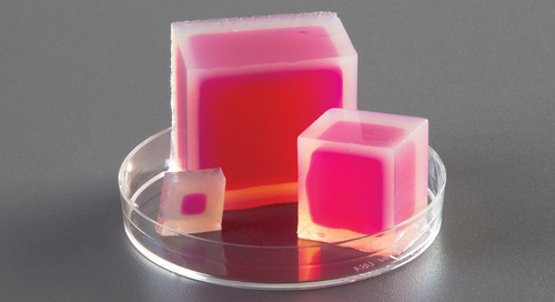 How to teach osmosis and diffusion with agar cubes – a free activity