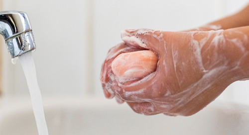 How does handwashing help prevent illness? The science of soap.