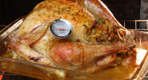 Fowl play: How heat kills the bacteria in your Thanksgiving turkey
