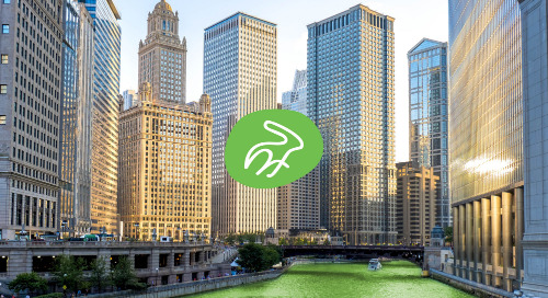 Go Nimbly is Expanding: Find Out Why & Meet Our Chicago Team