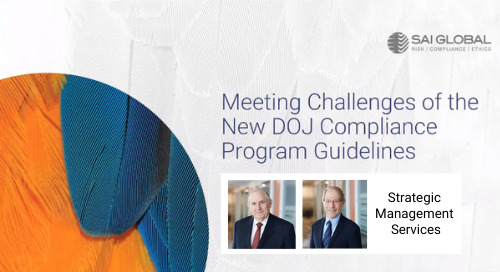 Meeting Challenges of the New DOJ Compliance Program Guidelines