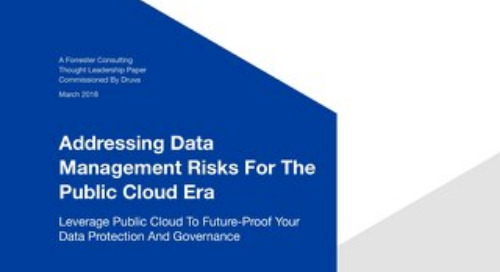Addressing Data Management Risks For The Public Cloud Era