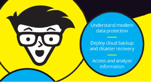 Cloud Data Protection - Druva Special Edition