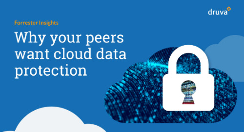 Why Your Peers Want Cloud Data Protection
