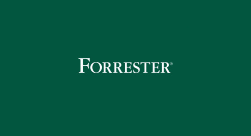Forrester - Addressing Data Management Risks For The Public Cloud Era