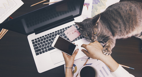On-Track Remote Teams: Making Productivity a Priority