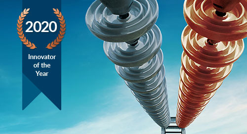 "National Grid Electricity Transmission Wins the 2020 Copperleaf Community ""Innovator of the Year"" Award!"