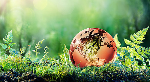 The Value of Sustainability