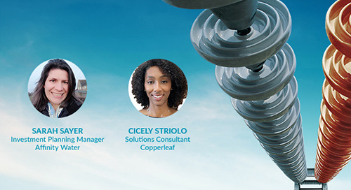 Interview: Q&A on the Go Live of Copperleaf Portfolio at Affinity Water