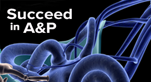 Succeed in A&P Podcast