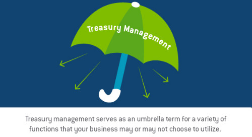 What treasury management means for your business
