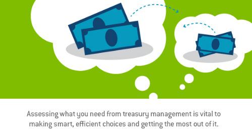 Utilizing the flexible benefits of treasury management