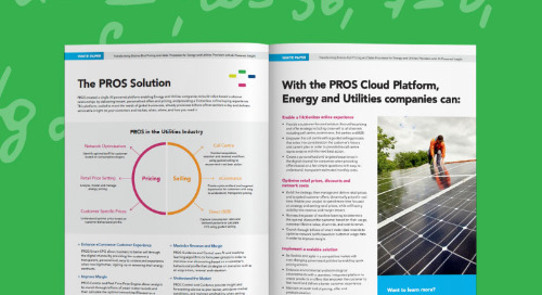 Transforming the End-to-End Sales Process in the Energy and Utilities Industry