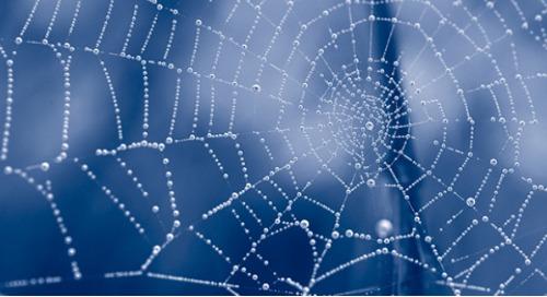 """Warum """"unified"""" HR-Software oder Orientierung im HR-Softwaredschungel"""