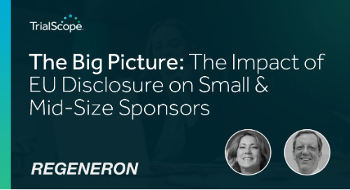 The Big Picture: Impact of EU Disclosure on Small & Mid-Size Sponsors