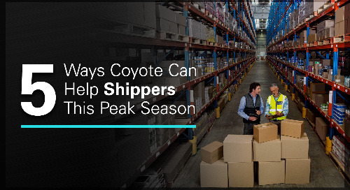 5 Ways Retailers Use Flexible Capacity to Manage Shipping Spikes