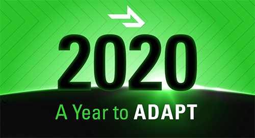 2020 Year in Review: How You Adapted (in an Infographic)