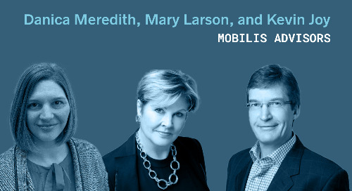 Succeeding With an Agile Transformation: A Q&A With Mobilis Advisors