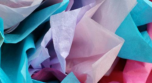 Tissue Paper Expert